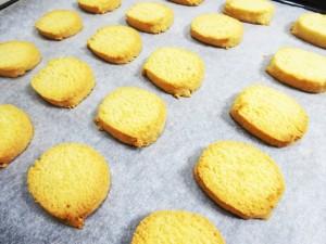 9b5078c62b081dd35e07e60c9d2075ec_s 米粉とおから入りクッキー