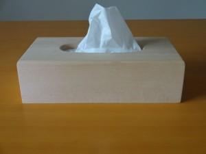 1854651731db933cc6d9a1caadc81b4f_s ティッシュボックス 風邪 鼻水 花粉症