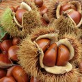 食欲の秋、どうせ食べるなら美容もプラス!栗の美肌効果を要チェック