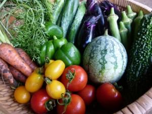 免疫力をUPさせるビタミン群は加工食品に頼らず積極的に食べたい