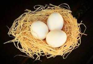 見逃せない卵の美容効果について