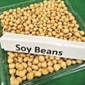 美肌になれる健康を保つことができる大豆の美容効果とは