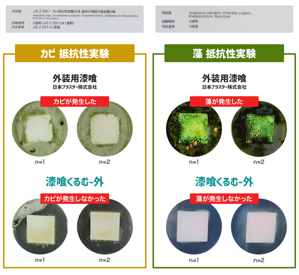 漆喰くるむ 外 : カビ・藻-抵抗性実験