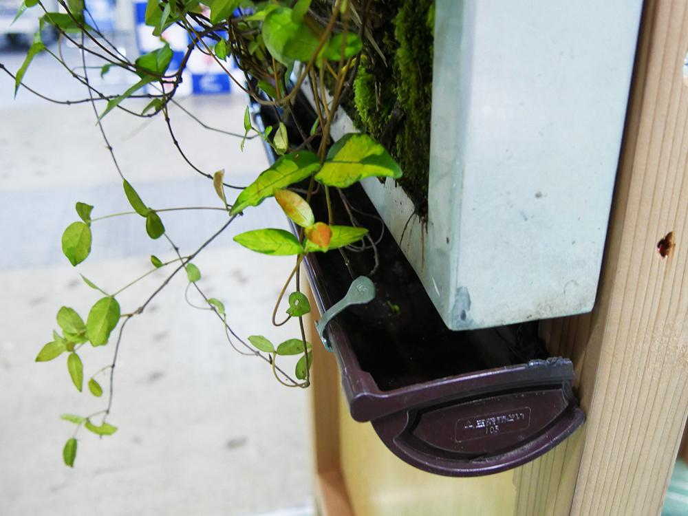 壁面緑化システム (2)