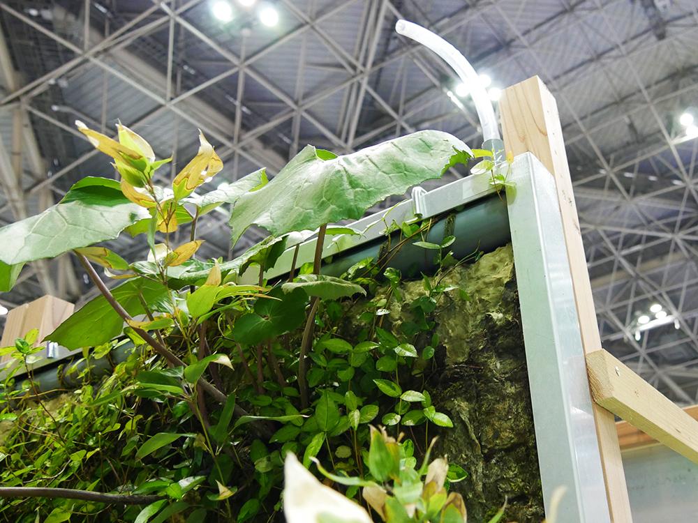 壁面緑化システム (3)