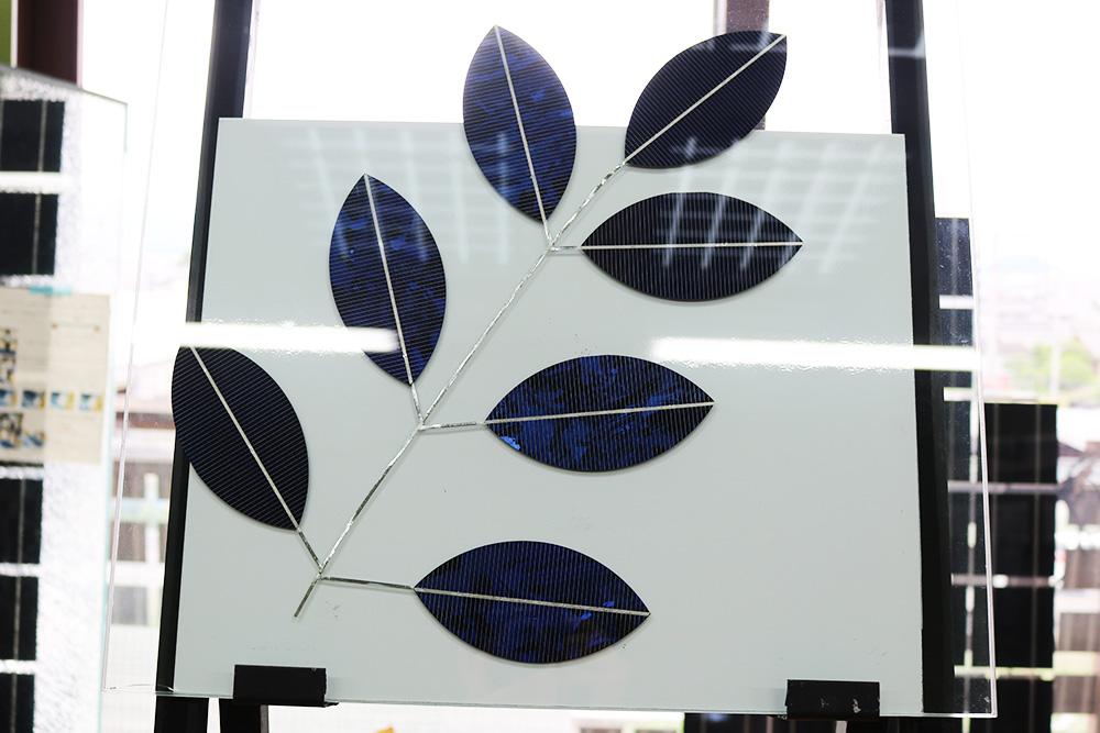 SoR-E : 木の葉