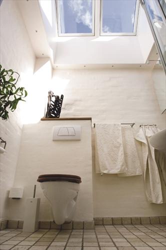天窓のトイレの施工事例