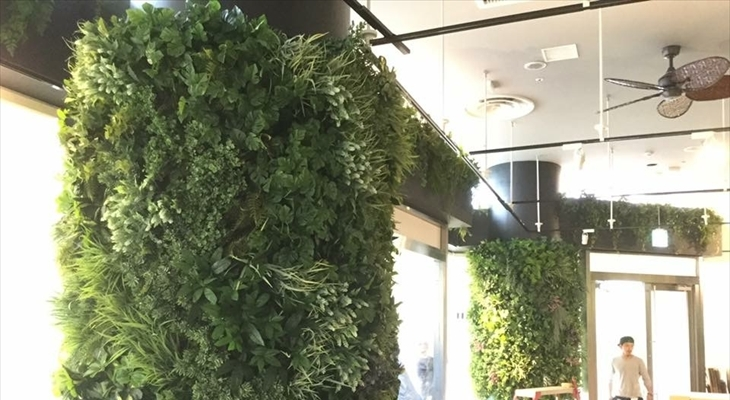 柱にも緑化できます