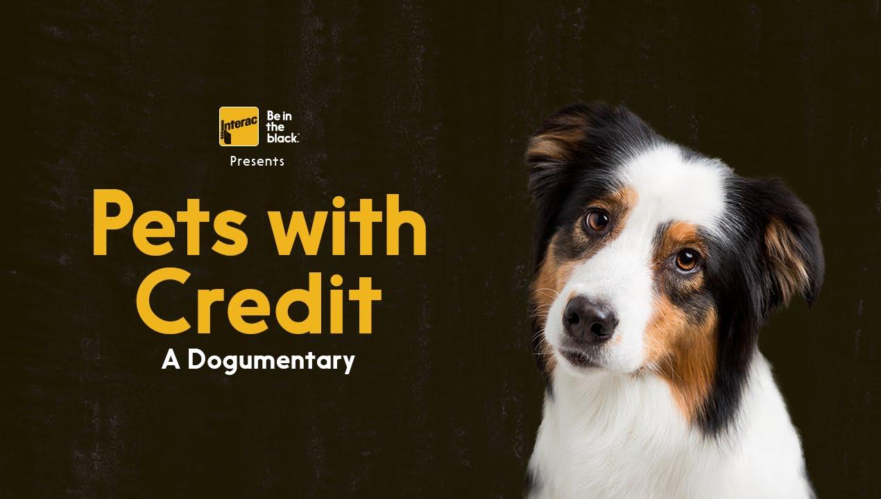 「犬も困ったワン!クレジットカード破産」- Pets with Credit: A Dogumentary