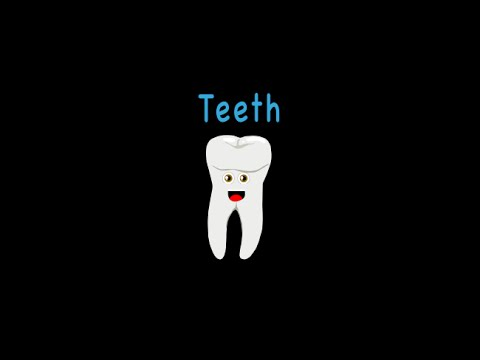 頭から離れない臓器の歌-歯ver.
