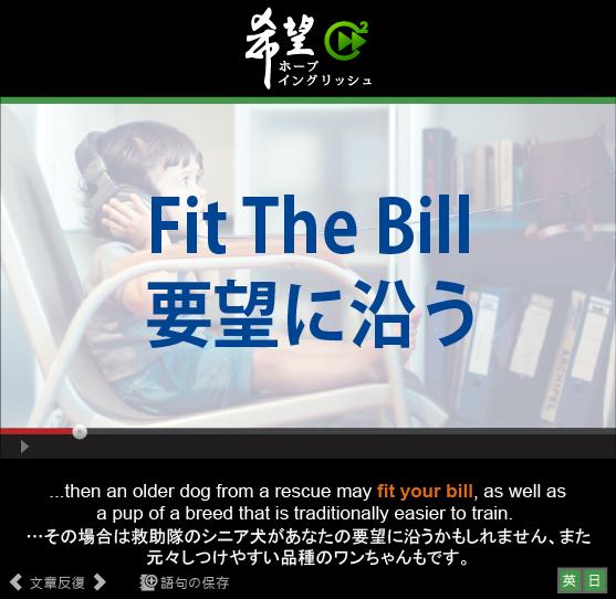 「要望に沿う」- Fit The Bill