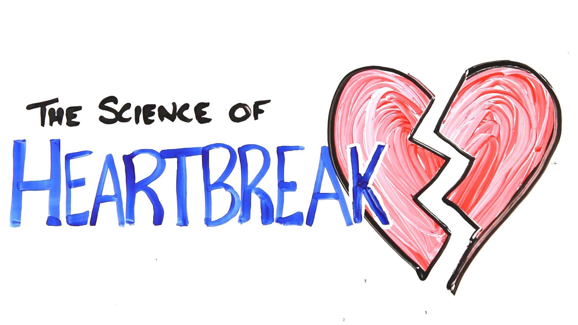 「失恋の科学、なぜ心が痛いの?」- The Science of Heartbreak