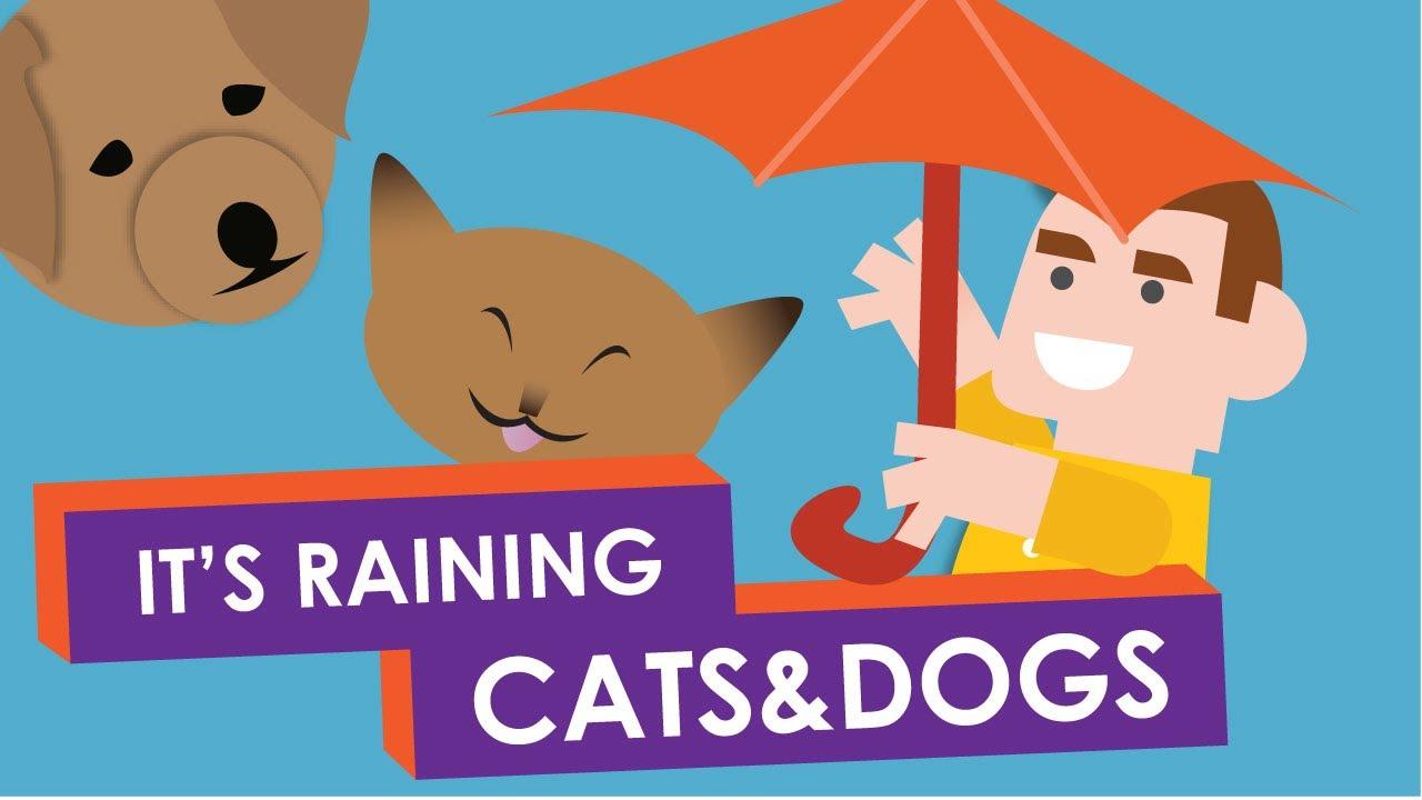 「慣用句『It's raining cats and dogs!』の由来」- Why Do We Say: It's Raining Cats and Dogs?