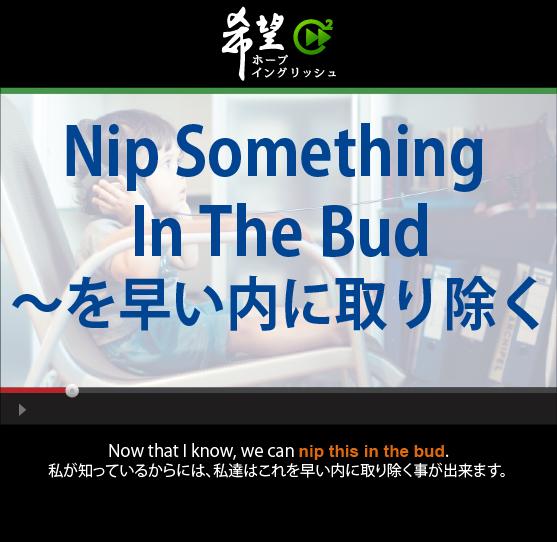 「~を早い内に取り除く」- Nip Something In The Bud
