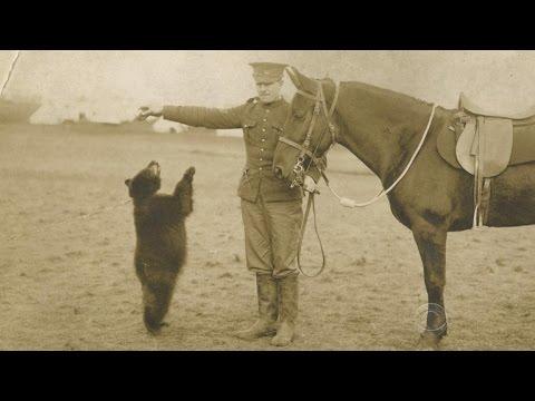 「あなたの知らない「プーさん」の裏話」- The Story behind Winnie the Pooh