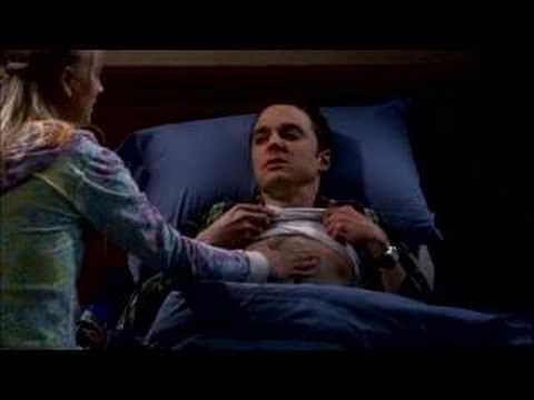 「大人気米ドラマ『ビッグバンセオリー』に登場した爆笑『子猫ソング』」- The Big Bang Theory - Soft Kitty