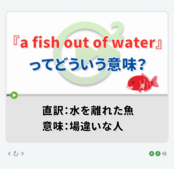 『a fish out of water』ってどういう意味?