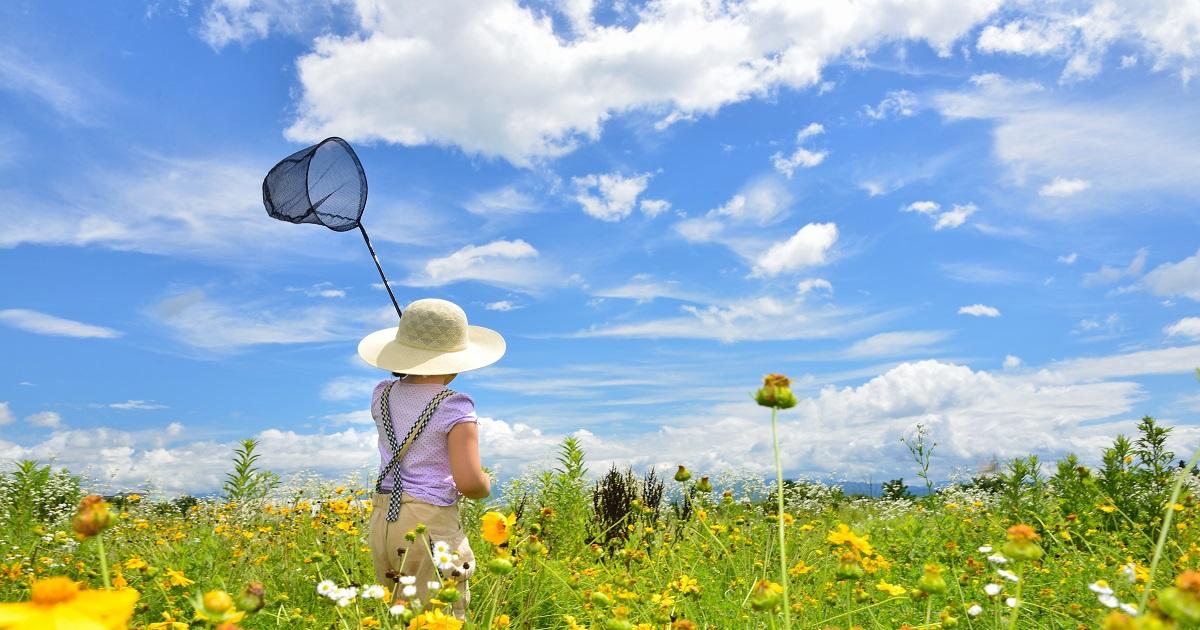 かわいい子にはキャンプをさせよ。自然体験は「生きる力」を育ててくれる。