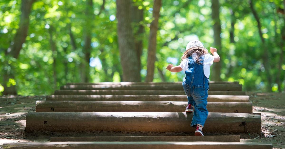子どもの脳を育てる5つのヒント2