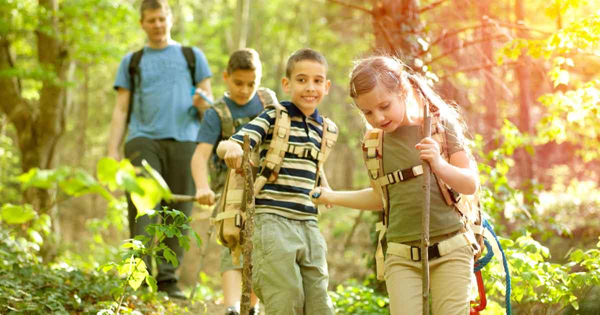 学校教育には自然体験活動が組み込まれている。