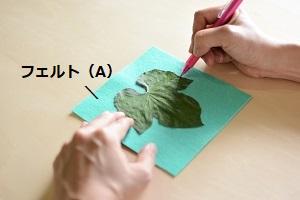 葉っぱの輪郭を写す