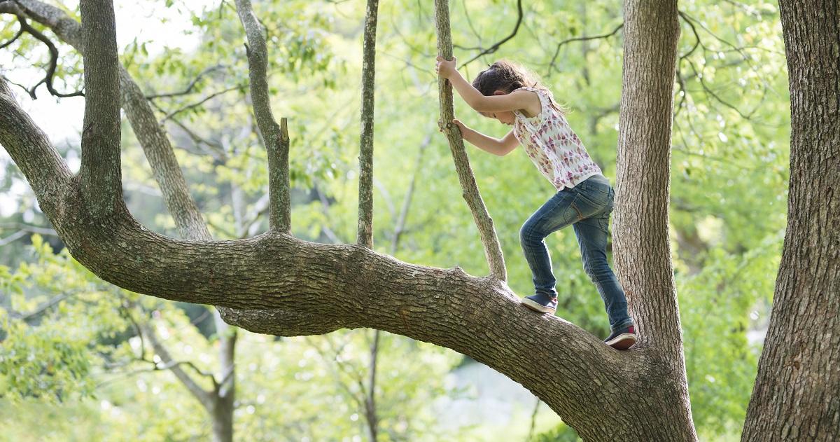 「体力」って何をさしているの? 子どもの体力向上に必要な3つのこと。