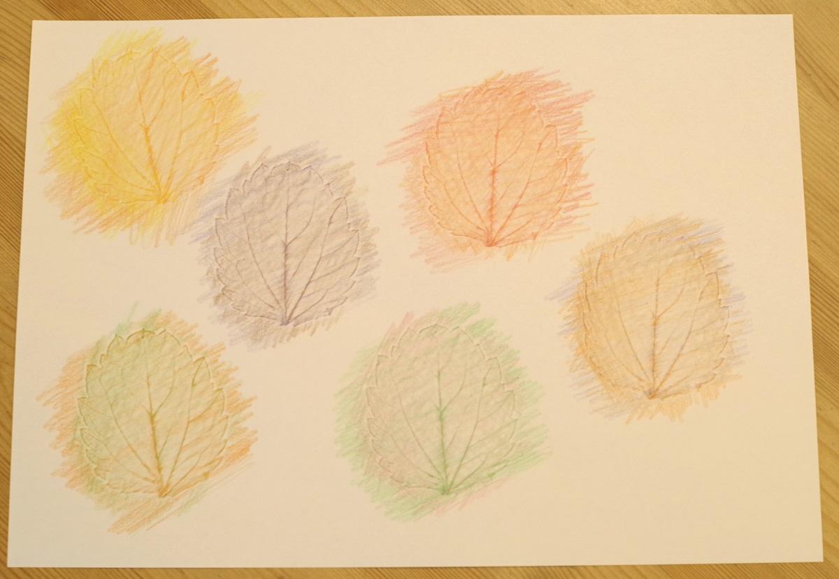子どもたちの想像力や好奇心を刺激する「葉っぱのフロッタージュ」5