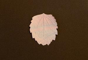 子どもたちの想像力や好奇心を刺激する「葉っぱのフロッタージュ」3