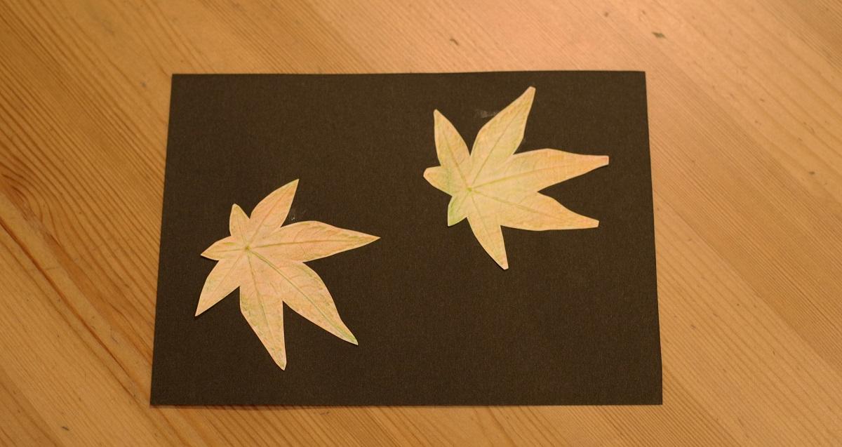 子どもたちの想像力や好奇心を刺激する「葉っぱのフロッタージュ」2