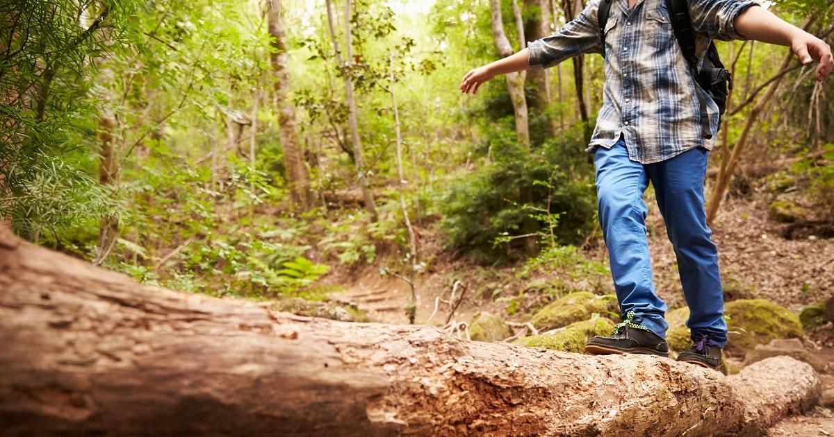 「感性で動く」幼少期に多くの自然体験をすべき理由3