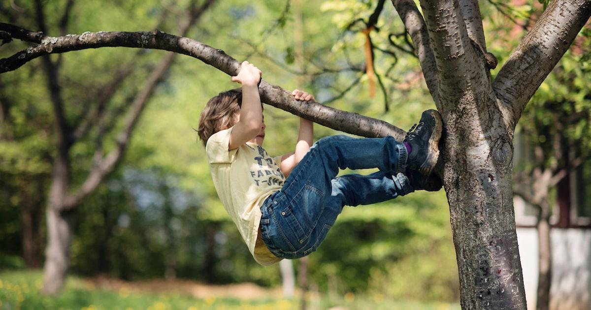 子どものうちに体験しておくべき「小さな危険」3