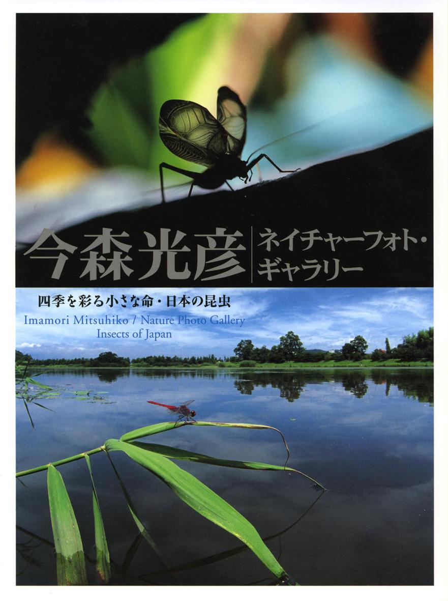 四季を彩る小さな命・日本の昆虫