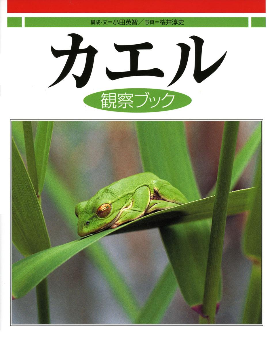 カエル観察ブック