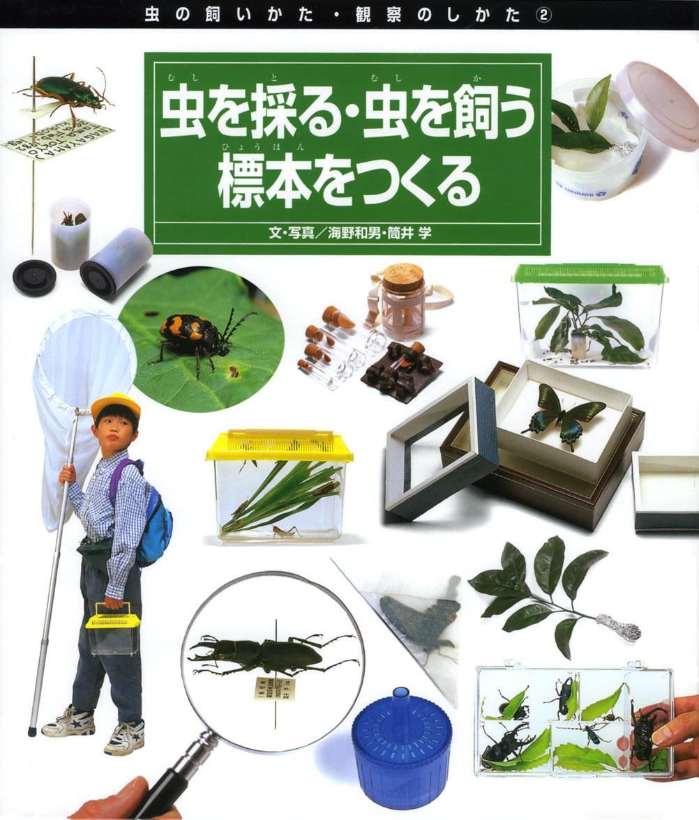 虫を採る・虫を飼う・標本をつくる
