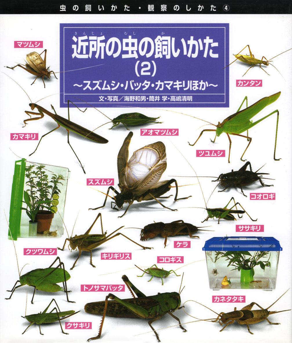 近所の虫の飼いかた(2)
