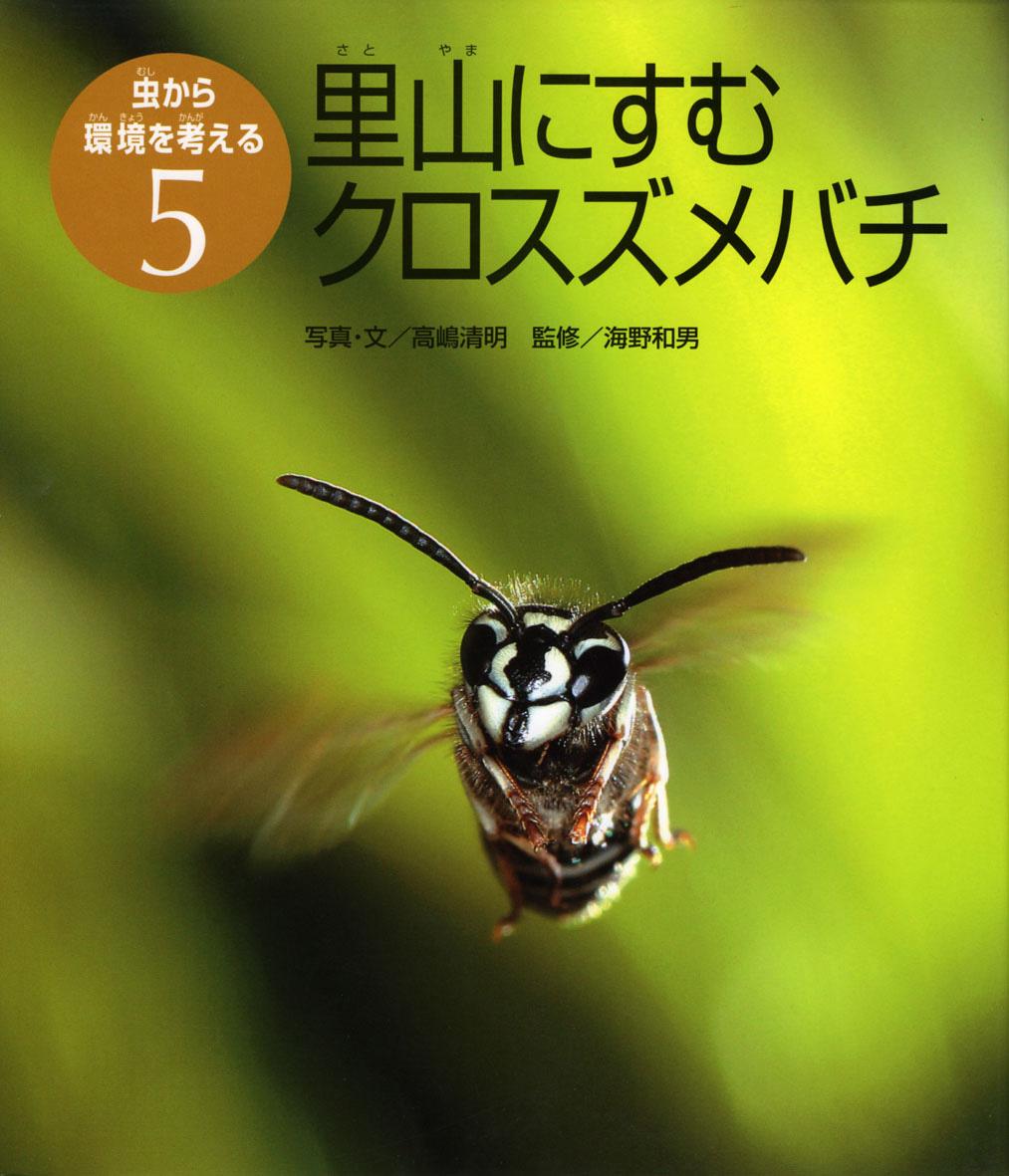 里山にすむクロスズメバチ