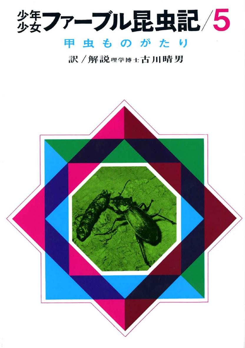 甲虫ものがたり