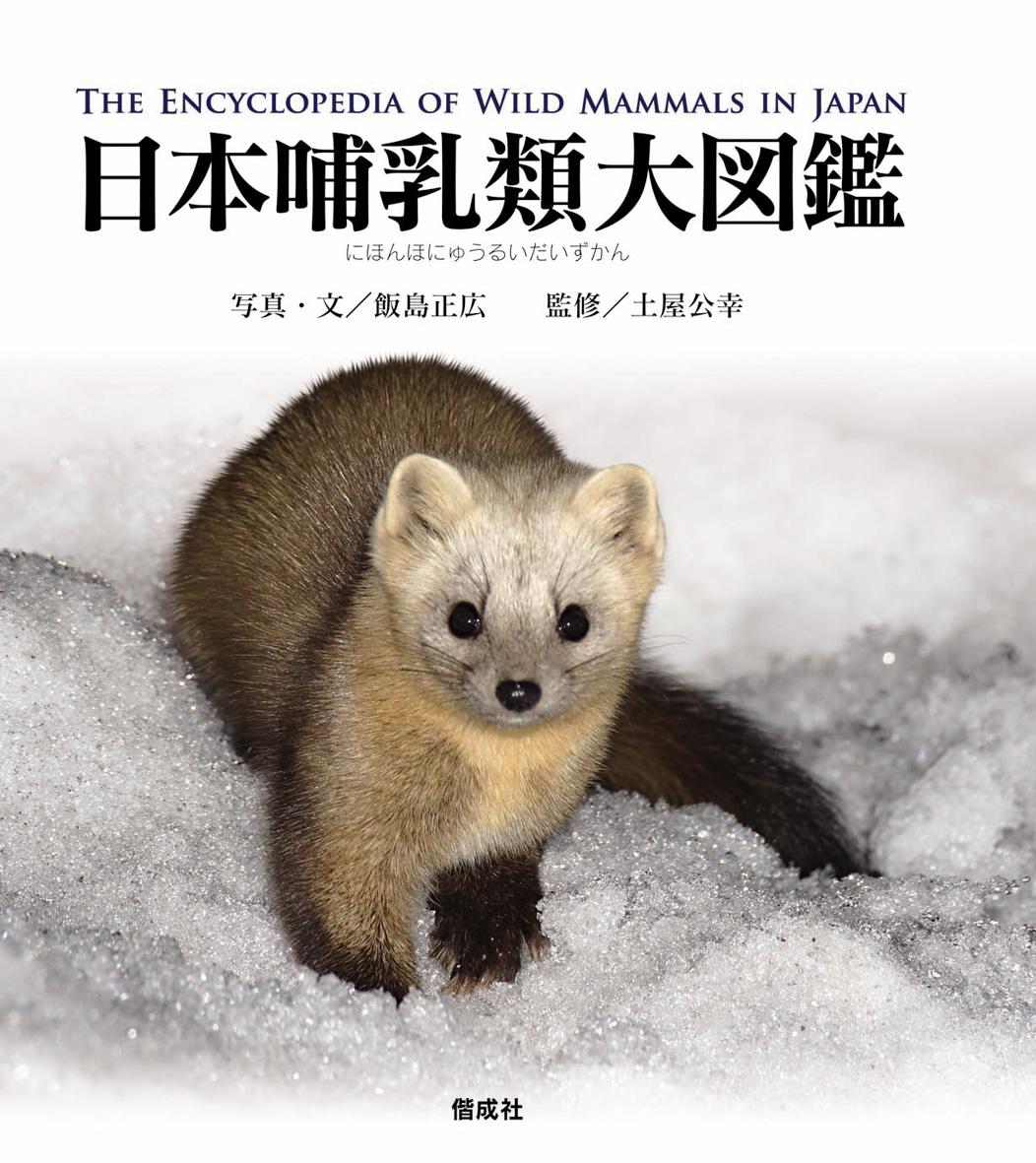 日本哺乳類大図鑑