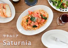 saturnia/サタルニアの画像