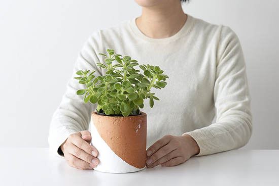 植木鉢/マルユトシリンダー(ホワイト)の商品写真