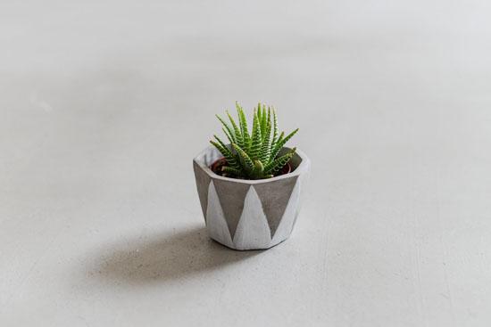 植木鉢/ディノ(径10cm)の商品写真