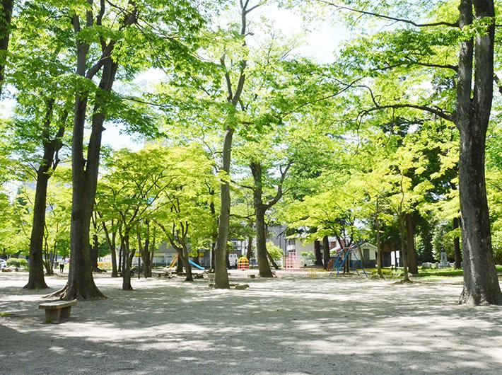 緑が美しい勝山公園。遊具もあり、子供と遊ぶ親の姿も