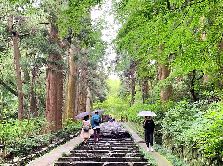 瑞鳳殿には平日も多くの観光客が訪れる