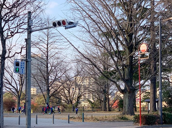 子供達が遊ぶ姿も見られる西公園