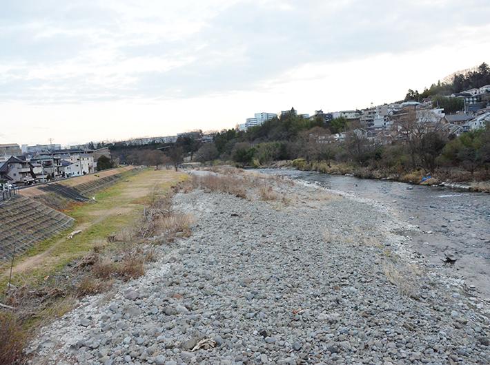 秋になると多くの仙台市民が芋煮会をする広瀬川