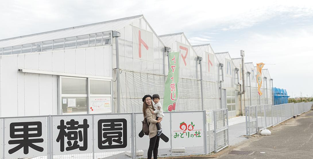 仙台駅から車で30分! せんだい農業園芸センターみどりの杜でトマト狩りをしてきました