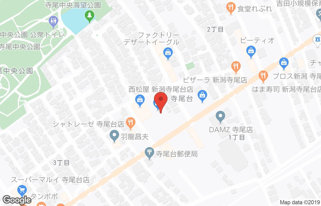 寺尾 ダムズ