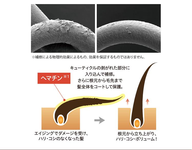キューティクルの剥がれた部分に入り込んで補修。さらに根元から毛先まで髪全体をコートして保護。
