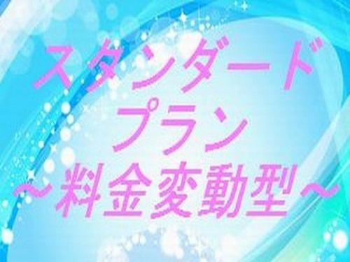 ☆★ ホテルビスタ スタンダードプラン ★☆