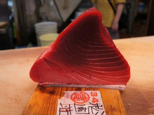 【新鮮魚介コース】美味しい海の幸を大満喫♪〜洋室ダブル利用〜